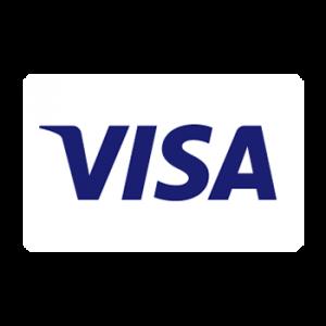 فيزا visa